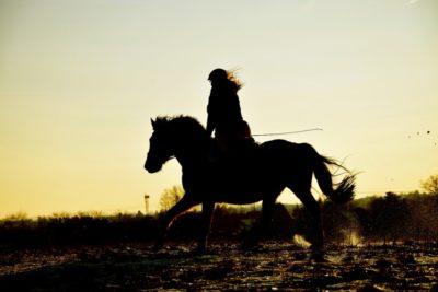 jinete galopando en puesta de sol