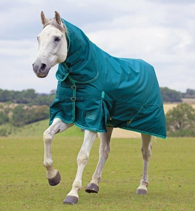 Capa y protector cuello impermeables para caballo