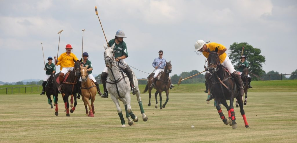 Jugadores practicando polo