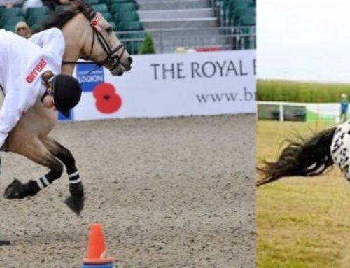 Qué son los pony games