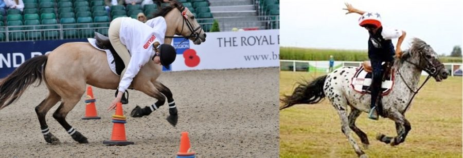 Pony Games dos ponis
